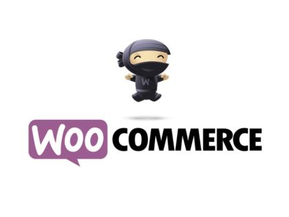woocommerce_training
